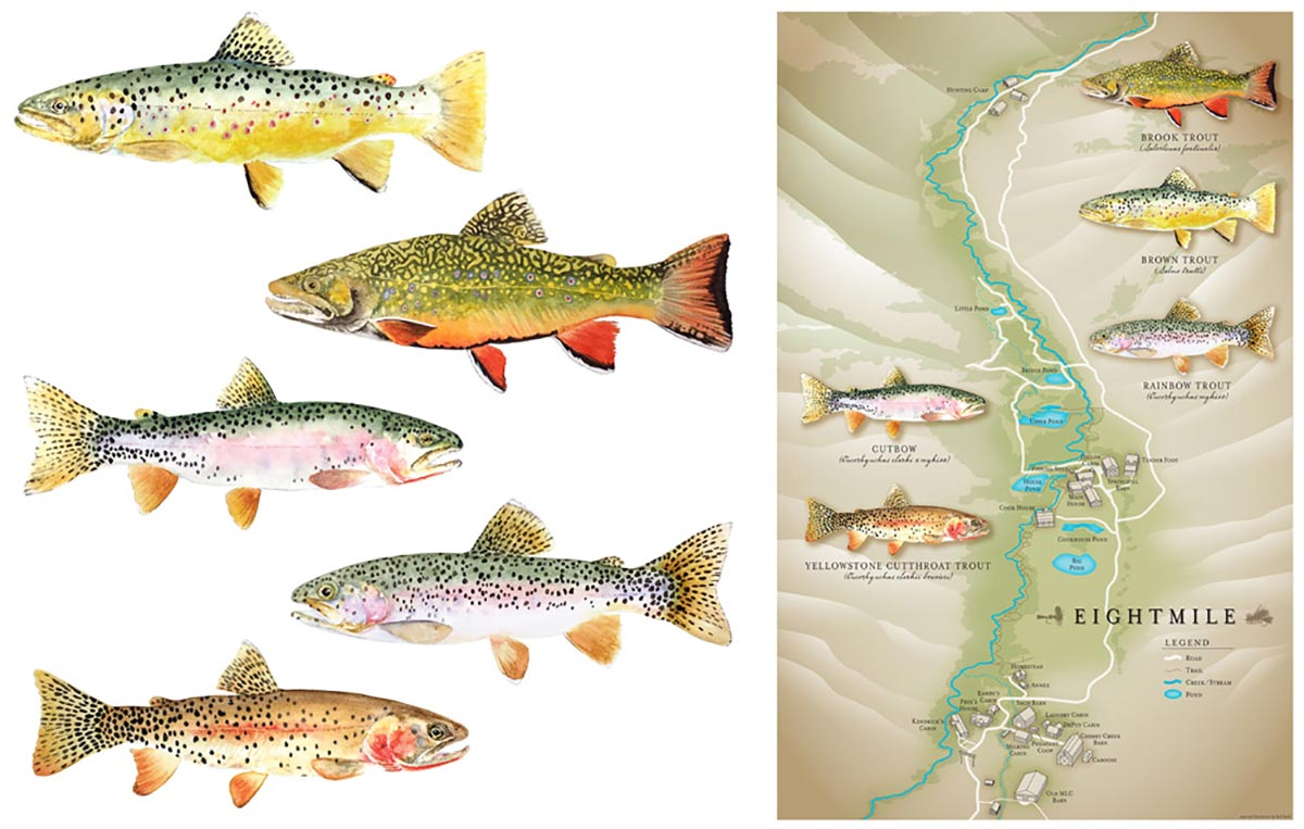 Illustrated Ranch Map with Illustrated Trout